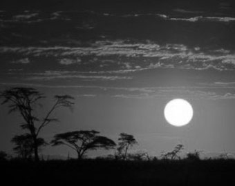 African Sunset, Landscape Of The Masai Mara Sunset Safari Kenya Africa. Black & White Photography Picture, B And W Prints Framed / Unframed