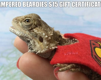 Pampered Beardie Gift Certificates