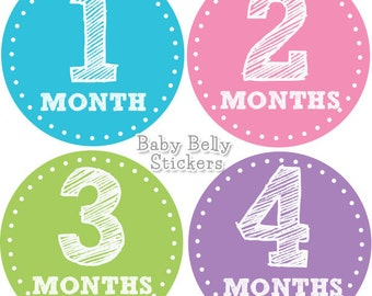 Baby Month Stickers, Monthly Baby Stickers, Bodysuit Stickers, Monthly Milestone Stickers, Baby Monthly Stickers, Baby Belly Stickers, Girls