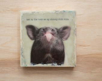 Pig Art with Quote 8x8