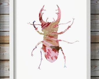 Stag Beetle Watercolor Painting - Wall Art Print - Insect Art - Bug illustration Pink Wall decor Aquarelle Animal Painting -  Fine Art Print