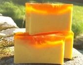 Thanaka and Tumeric Handmade Vegan Soap with Rosemary and Cedarwood Essential Oil