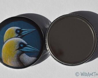 Bird Compact Mirror, Gannet, Purse Mirror, Gift, Bird Lover, Baby Shower Favor