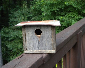 This Old Bluebird House