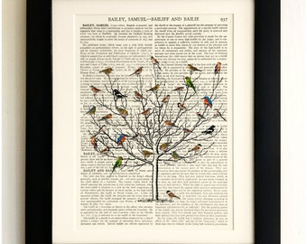FRAMED ART PRINT on old antique book page - Short tree with Birds, Vintage Upcycled Wall Art Print Encyclopaedia Dictionary Page
