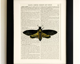 FRAMED ART PRINT on old antique book page - Big Death Moth, Insect, Vintage Upcycled Wall Art Print Encyclopaedia Dictionary Page