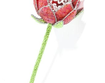 Beaded Protea