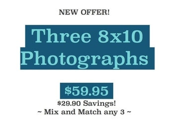 8x10 Photograph Set ~ Artwork, Photos, Prints, Joules, Nautical Photography, Beach, Rhode Island, New England, Sale