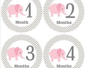 Monthly Baby Stickers Girl, Milestone Stickers, Month Stickers, Baby Month Stickers, Baby Stickers,Pink Elephants, Chevron#119
