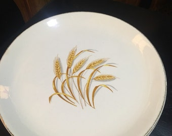 Homer-Laughlin Company dinner plate 1950 Golden Wheat motif retro mid century china
