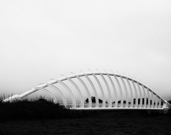 Photography Te Rewa Rewa Bridge  in New Zealand in black and white