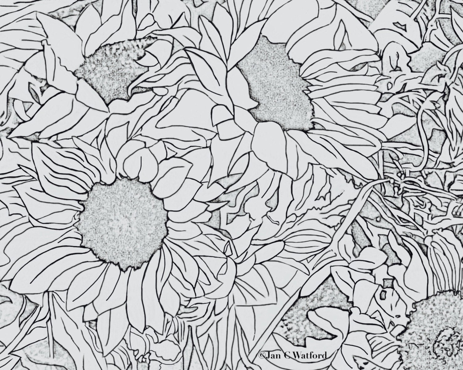 Stress relief coloring pages -  Zoom