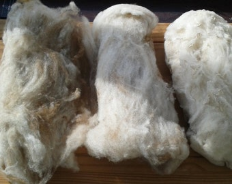Hand washed and drum carded shetland fleece 200g