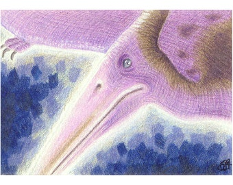 ACEO Pterosaur, purple, giclee fine art print, signed by artist, atc open edition