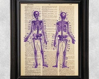 Purple Skeletons, Anatomy, Dictionary Art Print, Vintage, Antique Book Art, Recycled/Upcycled, Old Dictionary Book Page, 8 x 10 Print (#179)