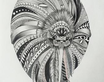 New Zealand Kiwi Print