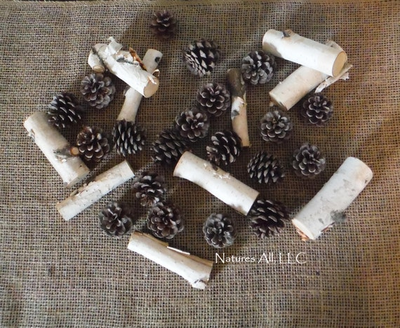 Decorative Pine Cones And White Birch Mini-Log Mix/Rustic Accent/30 Piece/For Rustic Wedding & Home Décor/Shipping Included: Item# PCLM-1000