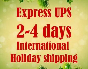Express international holiday shipping  UPS 2-4 days