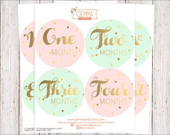 The Lucy | Chic Modern Baby Girl 12 Month Growth Stickers Set