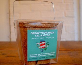 Cilantro Takeout Grow Kit