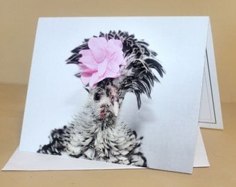 Fabulous Fowl Chicken with Flower Folded Photo Greeting Card Stationery Animal Photography