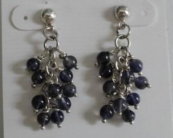 Iolite Earrings  -  #339