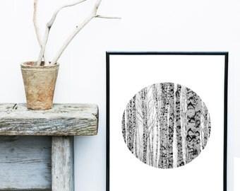 Minimalist Poster, Tree Print, Abstract Photo, Scandinavian Trees, Circle Print, Art Print, Scandinavian Print, Grey Wall Decor