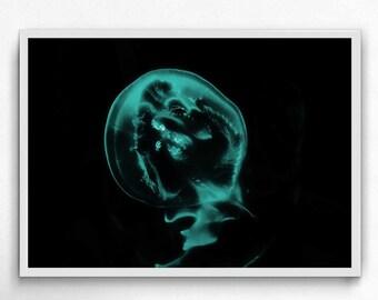 jellyfish Blue sky underwater photography,  jellyfish art print