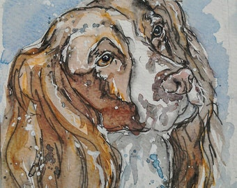 Springer spaniel dog art watercolour painting