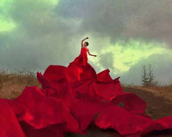The Volcano Dress