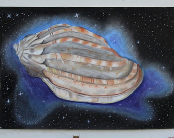 Shell in Space