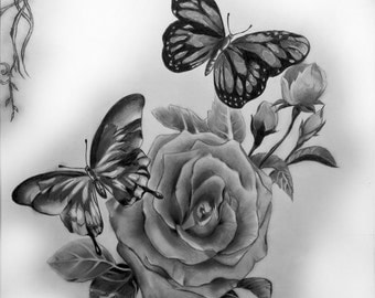 Roses and Butterflies - Pencil Drawing