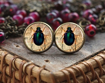 Insect Stud Earrings, Little Bug Earrings, Insect jewelry, bug post Earrings, bug jewelry, vintage style Insect, Victorian Insect jewelry