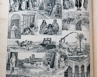 North Africa 1925 - Illustration from a Larousse old 1925 - 20 X 29 cm /Affiche old Dictionary Page