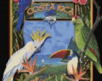 Vintage Costa Rica Cross Stitch pattern travel poster PDF - Instant Download!