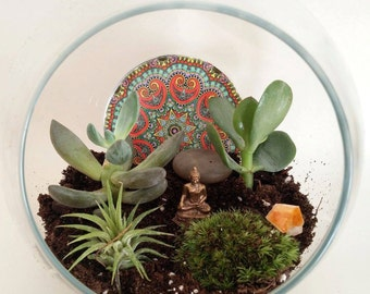 "DIY Meditative Succulent & Air Plant Garden ""Medium"" - Customized Crystals for Creativity, Luck, Positivity, Tranquility"