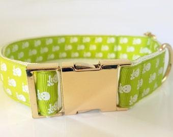 Cute dog collar with skulls for boy dog Small dog collar Large dog collar