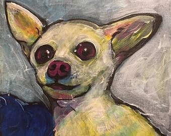 Chihuahua What?