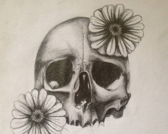 High Contrast Skull and Daisies (pencil)