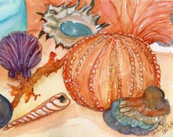 Seashells watercolor painting, original painting of seashells, coral, sea fan, glass fishing float, 5 x 7,  watercolor of shells