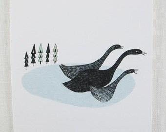 Christmas Card: Black Swans with Christmas trees