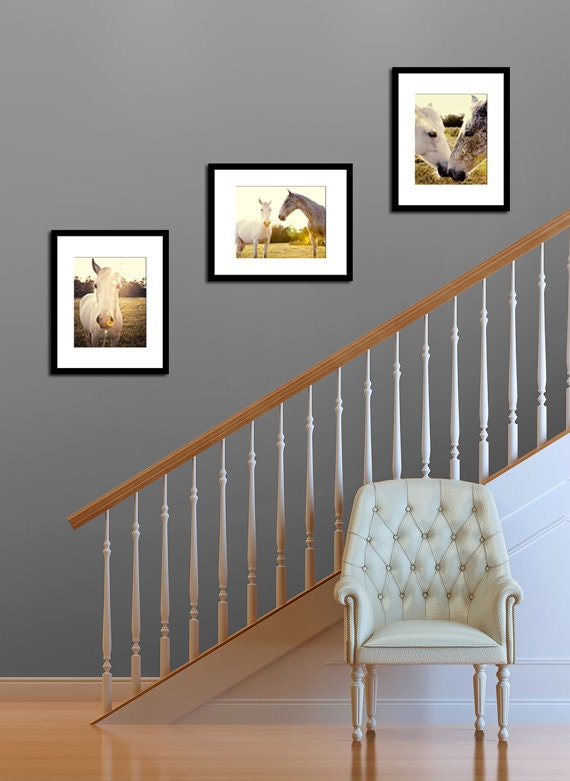 horse photography collection gift set rustic home decor farmhouse photography horse nursery art yellow home decor animal photographs