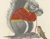 Squirrel sweater.  Limited edition print by Vivienne Strauss.
