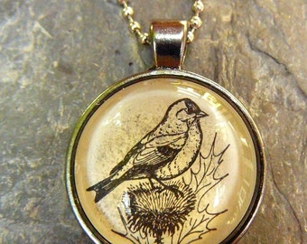 Goldfinch - dictionary illustration pendant necklace