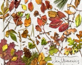 Autumn Foliage Leaves digital scrapbooking graphics / clipart / instant download / printable