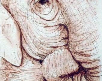 Elephant ink drawing   6 x 6 inch