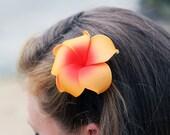 Flower Hair Clip, 3 inch Plumeria, Tangerine Orange, Flower Clips, Beach   Hair Accessory