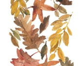 Art print All the leaves are Brown, autumn leaves watercolor painting, Indian summer, fall leaves art print, thanksgiving home decor