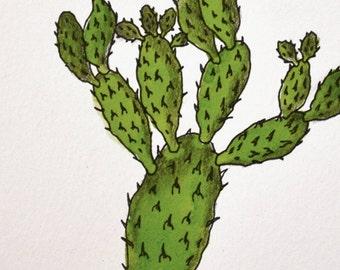 "desert botanical: ""prickly pear cactus,"" original ink painting"