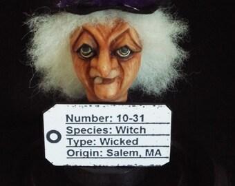 Halloween Witch Lab Specimen 10-31 Clay Figurine Craft One of a kind Polymer Clay Doll